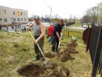 Озеленение в Шкотово — В рамках программы благоустройства городов и поселков края в пгт. Шкотово прошла акция «Посади дерево»